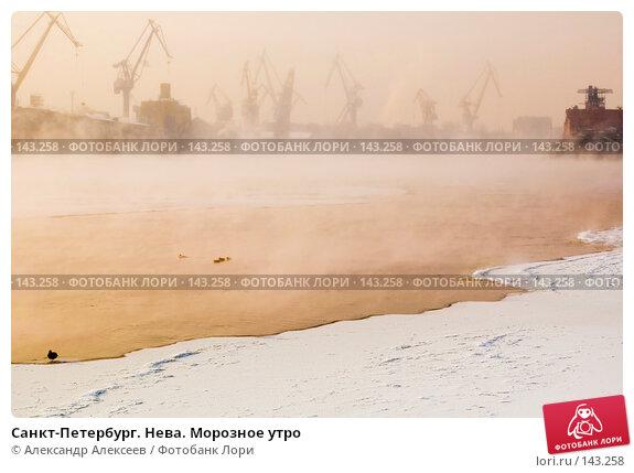 Санкт-Петербург. Нева. Морозное утро, эксклюзивное фото № 143258, снято 10 марта 2006 г. (c) Александр Алексеев / Фотобанк Лори