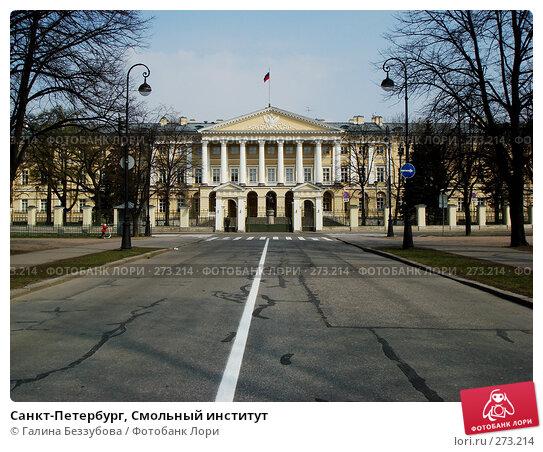 Санкт-Петербург, Смольный институт, фото № 273214, снято 27 апреля 2008 г. (c) Галина Беззубова / Фотобанк Лори