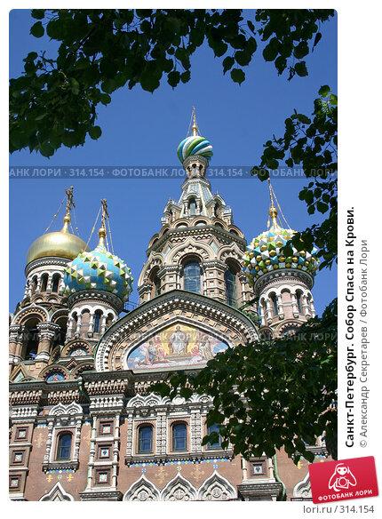 Санкт-Петербург. Собор Спаса на Крови., фото № 314154, снято 7 июня 2008 г. (c) Александр Секретарев / Фотобанк Лори