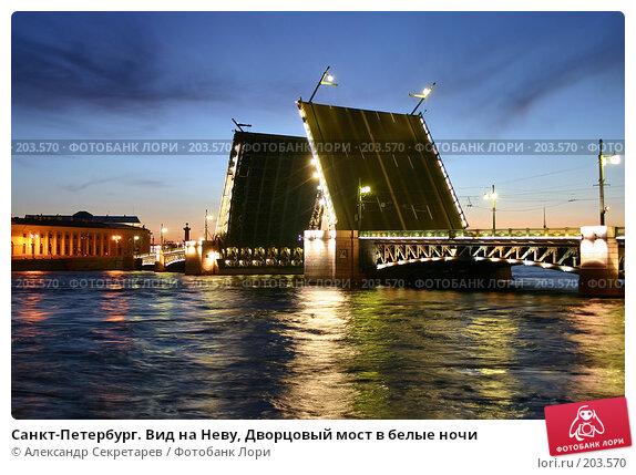 Санкт-Петербург. Вид на Неву, Дворцовый мост в белые ночи, фото № 203570, снято 10 июня 2005 г. (c) Александр Секретарев / Фотобанк Лори