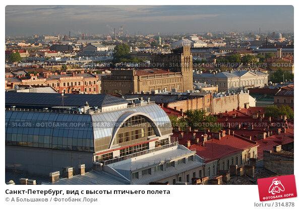 Купить «Санкт-Петербург, вид с высоты птичьего полета», фото № 314878, снято 23 марта 2018 г. (c) A Большаков / Фотобанк Лори