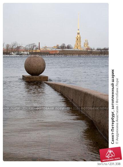 Купить «Санкт-Петербург, затопленный шарик», фото № 231338, снято 3 февраля 2008 г. (c) Андрюхина Анастасия / Фотобанк Лори