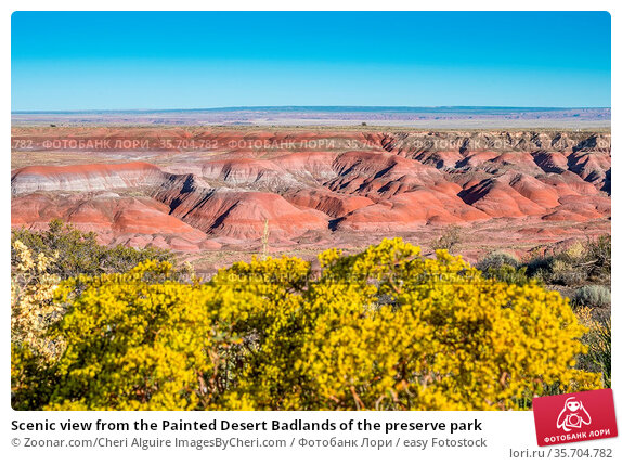 Scenic view from the Painted Desert Badlands of the preserve park. Стоковое фото, фотограф Zoonar.com/Cheri Alguire ImagesByCheri.com / easy Fotostock / Фотобанк Лори