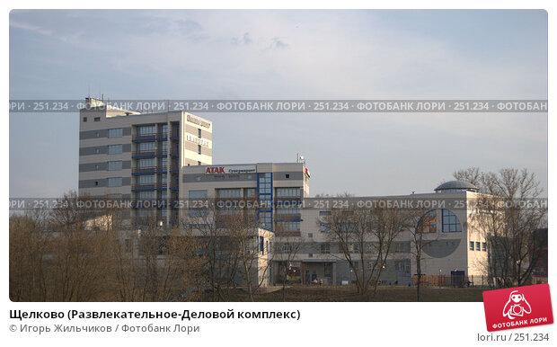Щелково (Развлекательное-Деловой комплекс), фото № 251234, снято 11 апреля 2008 г. (c) Игорь Жильчиков / Фотобанк Лори