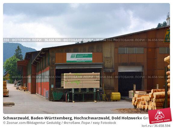 Schwarzwald, Baden-Württemberg, Hochschwarzwald, Dold Holzwerke GmbH... Стоковое фото, фотограф Zoonar.com/Bildagentur Geduldig / easy Fotostock / Фотобанк Лори