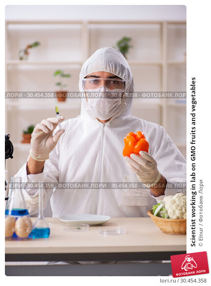 Scientist working in lab on GMO fruits and vegetables. Стоковое фото, фотограф Elnur / Фотобанк Лори