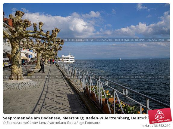 Seepromenade am Bodensee, Meersburg, Baden-Wuerttemberg, Deutschland... Стоковое фото, фотограф Zoonar.com/Günter Lenz / age Fotostock / Фотобанк Лори
