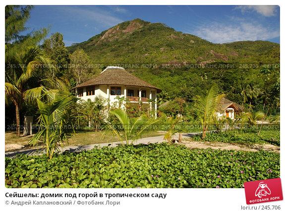 Сейшелы: домик под горой в тропическом саду, фото № 245706, снято 29 августа 2007 г. (c) Андрей Каплановский / Фотобанк Лори