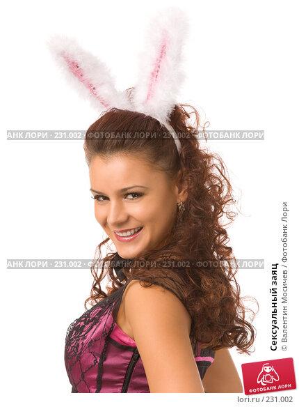 Купить «Сексуальный заяц», фото № 231002, снято 23 декабря 2007 г. (c) Валентин Мосичев / Фотобанк Лори