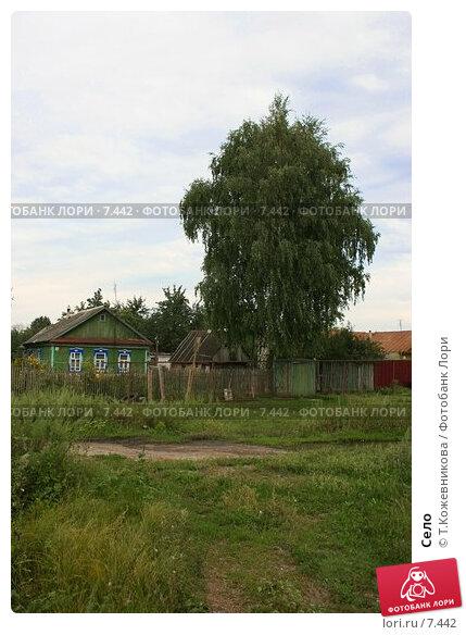 Село, фото № 7442, снято 22 января 2017 г. (c) Т.Кожевникова / Фотобанк Лори