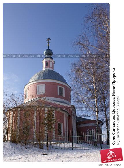 Село Синьково. Церковь Илии Пророка, фото № 214954, снято 12 февраля 2008 г. (c) Julia Nelson / Фотобанк Лори