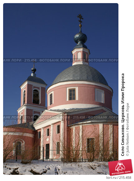 Село Синьково. Церковь Илии Пророка, фото № 215458, снято 12 февраля 2008 г. (c) Julia Nelson / Фотобанк Лори