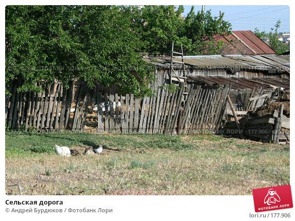 Купить «Сельская дорога», фото № 177906, снято 26 мая 2007 г. (c) Андрей Бурдюков / Фотобанк Лори