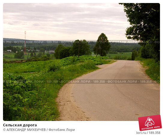 Сельская дорога, фото № 189358, снято 17 июня 2006 г. (c) АЛЕКСАНДР МИХЕИЧЕВ / Фотобанк Лори