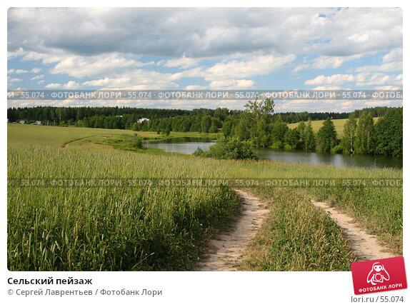 Сельский пейзаж, фото № 55074, снято 22 июня 2007 г. (c) Сергей Лаврентьев / Фотобанк Лори