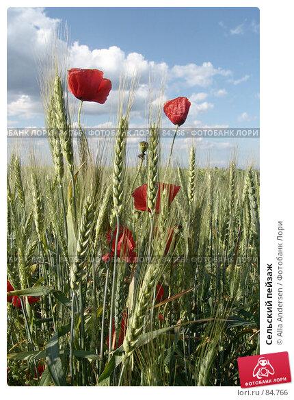 Сельский пейзаж, фото № 84766, снято 5 июня 2006 г. (c) Alla Andersen / Фотобанк Лори