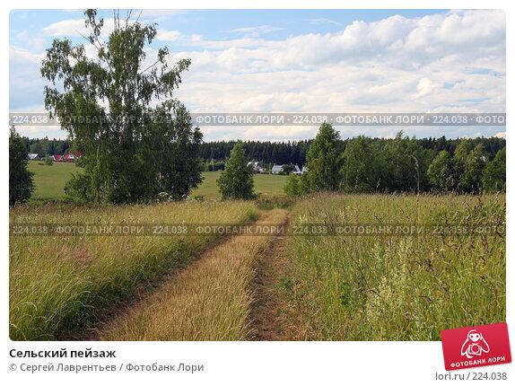Сельский пейзаж, фото № 224038, снято 22 июня 2007 г. (c) Сергей Лаврентьев / Фотобанк Лори