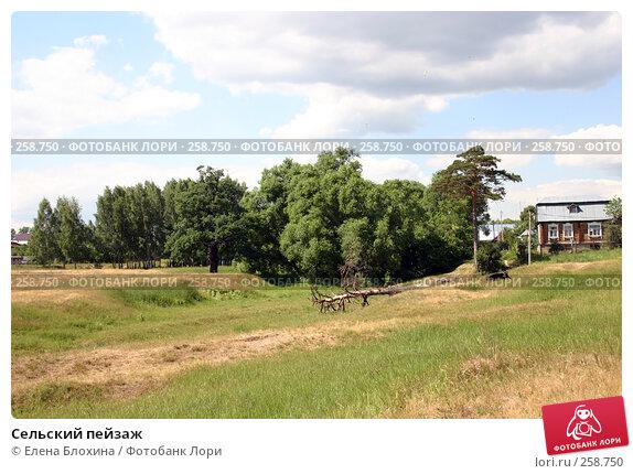 Сельский пейзаж, фото № 258750, снято 21 июня 2007 г. (c) Елена Блохина / Фотобанк Лори
