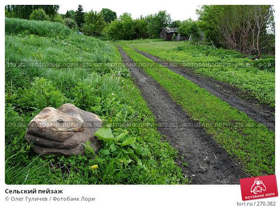 Сельский пейзаж, фото № 270382, снято 30 мая 2006 г. (c) Олег Гуличев / Фотобанк Лори