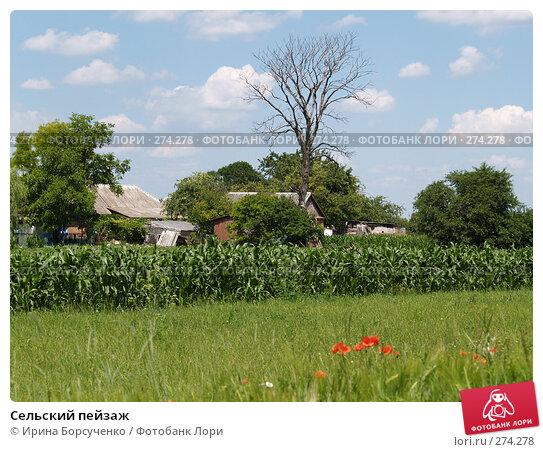 Сельский пейзаж, фото № 274278, снято 18 июня 2007 г. (c) Ирина Борсученко / Фотобанк Лори