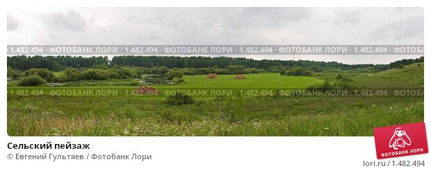 Сельский пейзаж. Стоковое фото, фотограф Евгений Гультяев / Фотобанк Лори