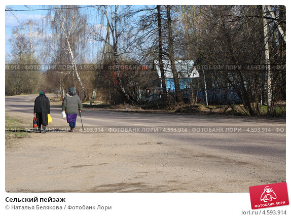 Сельский пейзаж (2013 год). Стоковое фото, фотограф Наталья Белякова / Фотобанк Лори