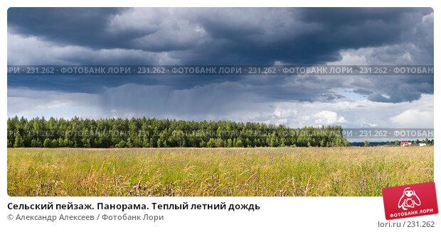 Сельский пейзаж. Панорама. Теплый летний дождь, эксклюзивное фото № 231262, снято 19 июля 2006 г. (c) Александр Алексеев / Фотобанк Лори