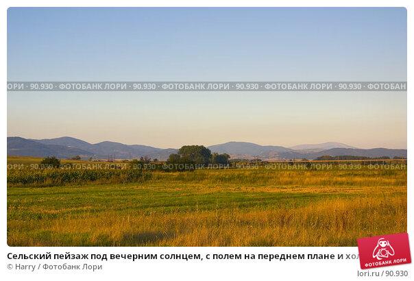 Сельский пейзаж под вечерним солнцем, с полем на переднем плане и холмы на заднем, фото № 90930, снято 17 августа 2007 г. (c) Harry / Фотобанк Лори