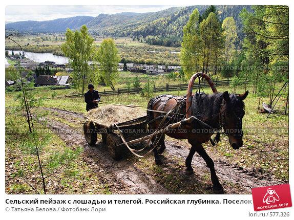 Купить «Сельский пейзаж с лошадью и телегой. Российская глубинка. Поселок  Большой Унгут.  Южная Сибирь.», эксклюзивное фото № 577326, снято 12 сентября 2008 г. (c) Татьяна Белова / Фотобанк Лори