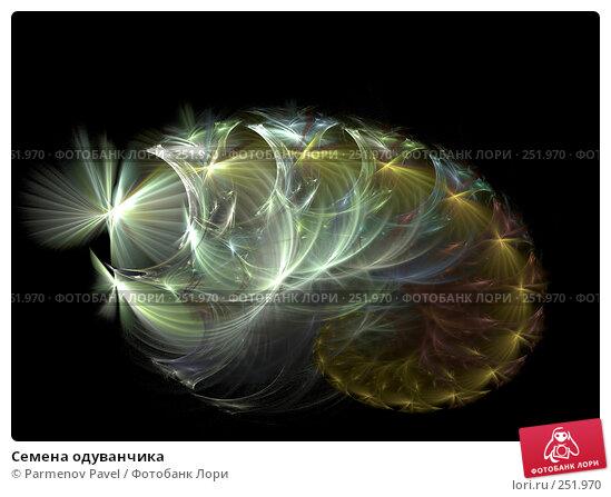 Купить «Семена одуванчика», иллюстрация № 251970 (c) Parmenov Pavel / Фотобанк Лори