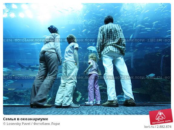 Купить «Семья в океанариуме», фото № 2882874, снято 17 апреля 2010 г. (c) Losevsky Pavel / Фотобанк Лори