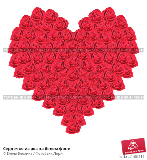 Сердечко из роз на белом фоне, фото № 166114, снято 29 марта 2017 г. (c) Елена Блохина / Фотобанк Лори