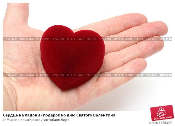 Купить «Сердце на ладони - подарок ко дню Святого Валентина», фото № 176690, снято 12 января 2008 г. (c) Михаил Коханчиков / Фотобанк Лори