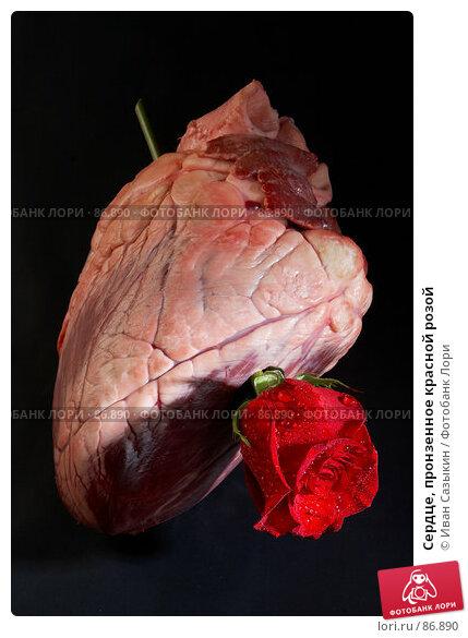 Сердце, пронзенное красной розой, фото № 86890, снято 27 января 2006 г. (c) Иван Сазыкин / Фотобанк Лори