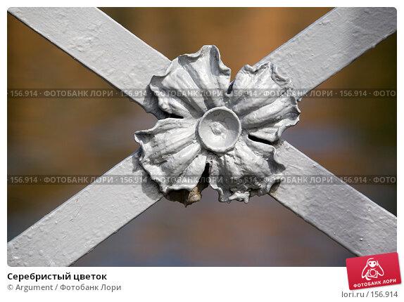 Серебристый цветок, фото № 156914, снято 18 мая 2007 г. (c) Argument / Фотобанк Лори