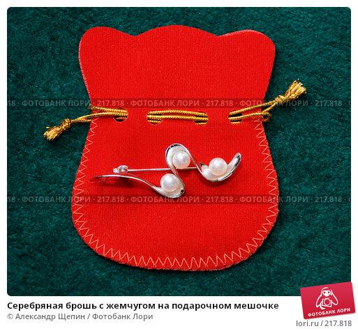 Серебряная брошь с жемчугом на подарочном мешочке, эксклюзивное фото № 217818, снято 7 марта 2008 г. (c) Александр Щепин / Фотобанк Лори