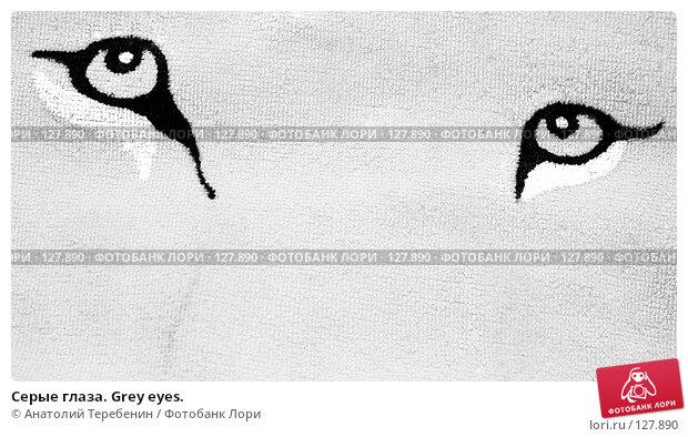 Серые глаза. Grey eyes., иллюстрация № 127890 (c) Анатолий Теребенин / Фотобанк Лори
