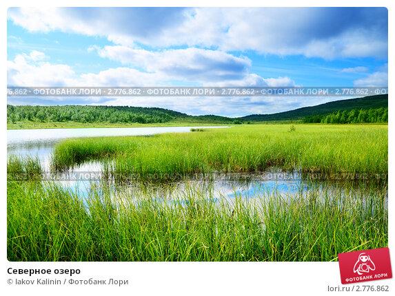 Купить «Северное озеро», фото № 2776862, снято 18 августа 2008 г. (c) Iakov Kalinin / Фотобанк Лори