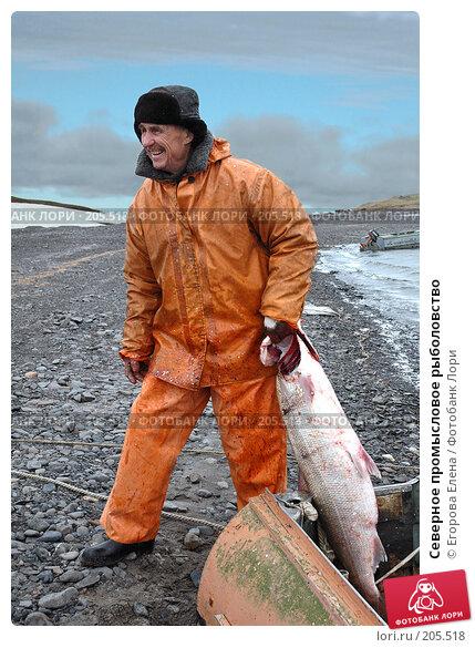 Северное промысловое рыболовство, фото № 205518, снято 14 июля 2005 г. (c) Егорова Елена / Фотобанк Лори