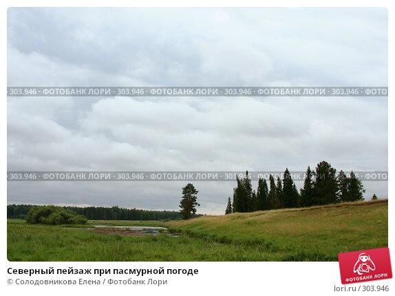 Северный пейзаж при пасмурной погоде, эксклюзивное фото № 303946, снято 25 июля 2006 г. (c) Солодовникова Елена / Фотобанк Лори