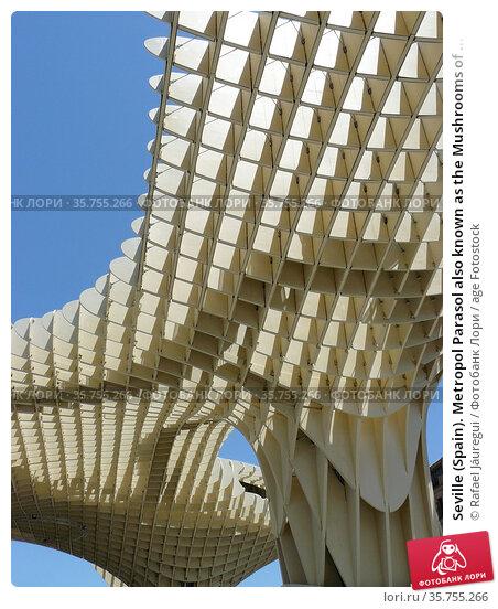Seville (Spain). Metropol Parasol also known as the Mushrooms of ... Стоковое фото, фотограф Rafael Jáuregui / age Fotostock / Фотобанк Лори