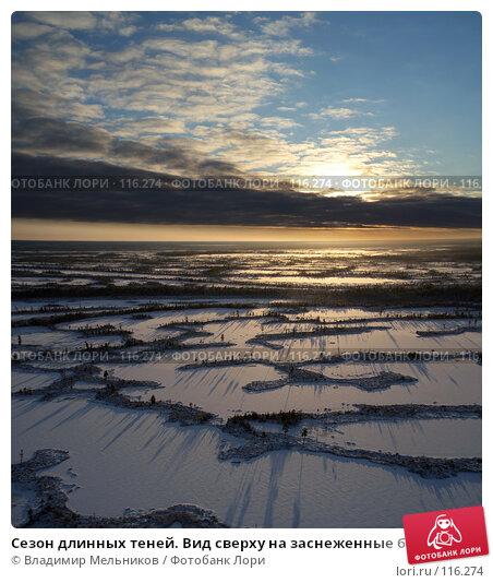 Купить «Сезон длинных теней. Вид сверху на заснеженные болота.», фото № 116274, снято 8 ноября 2007 г. (c) Владимир Мельников / Фотобанк Лори