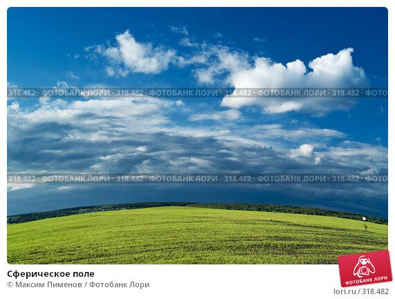 Сферическое поле, фото № 318482, снято 8 июня 2007 г. (c) Максим Пименов / Фотобанк Лори