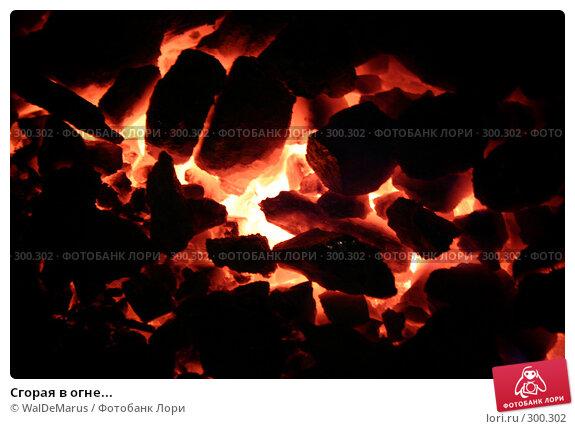 Сгорая в огне..., фото № 300302, снято 29 июня 2017 г. (c) WalDeMarus / Фотобанк Лори