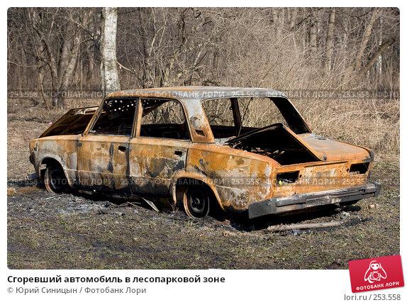 Сгоревший автомобиль в лесопарковой зоне, фото № 253558, снято 30 марта 2008 г. (c) Юрий Синицын / Фотобанк Лори