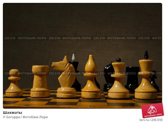 Шахматы, фото № 235510, снято 5 марта 2007 г. (c) Goruppa / Фотобанк Лори