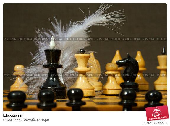 Шахматы, фото № 235514, снято 3 марта 2007 г. (c) Goruppa / Фотобанк Лори