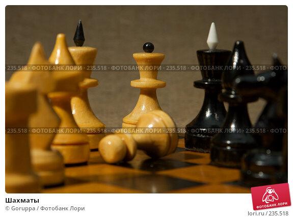 Шахматы, фото № 235518, снято 5 марта 2007 г. (c) Goruppa / Фотобанк Лори