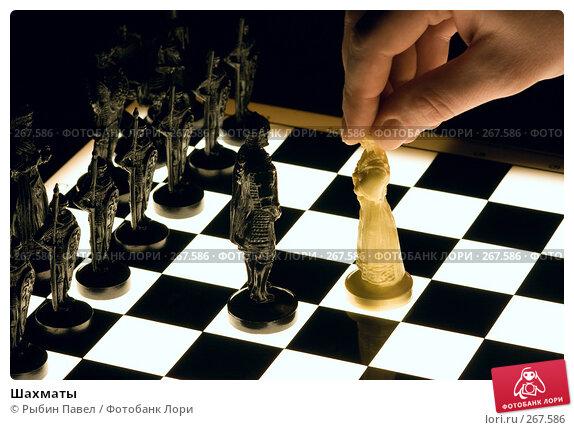 Купить «Шахматы», фото № 267586, снято 22 апреля 2008 г. (c) Рыбин Павел / Фотобанк Лори