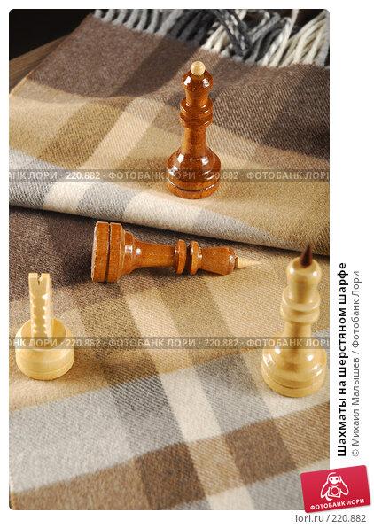 Купить «Шахматы на шерстяном шарфе», фото № 220882, снято 5 февраля 2008 г. (c) Михаил Малышев / Фотобанк Лори